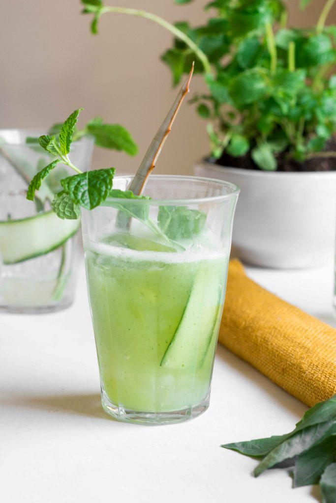 aloe vere cucumber cooler in glass with mint sprig and aloe vera leaf